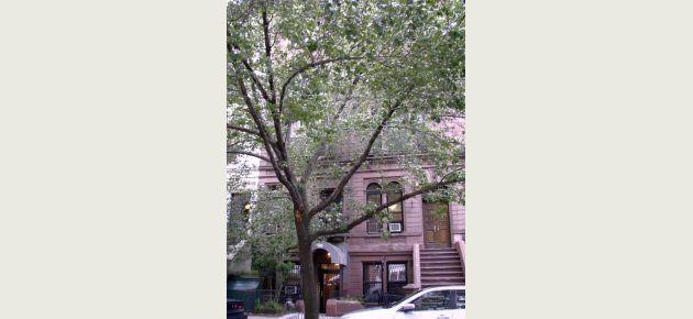 128 West 78th Street