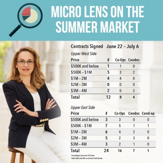 Micro Lens on the Summer Market – 1st Edition